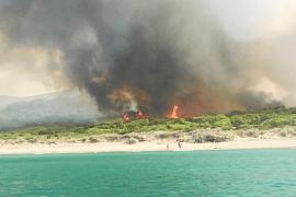 Son Serra de Marina: zweiter Waldbrand in zwei Tagen