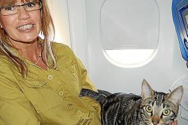 Am meisten werden Tiere auf Mallorca-Flügen in Privatflugzeugen mitgenommen. Da gelten andere Bedingungen als in den Linienflüge