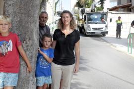 Anwohner in Palma verhindern das Fällen zweier Bäume