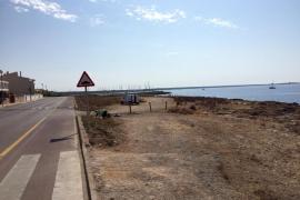 Umzäunung soll Küstenstreifen in Sa Ràpita retten