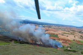 Brand im Naturschutzgebiet S'Albufera