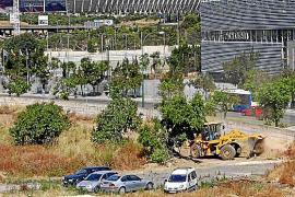 Das Grundstück von Can Domenge befindet sich in der Nachbarschaft der Radsporthalle Palma Arena und wird derzeit mit Luxus-Wohnu