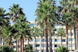 Eine stattliche Palmenoase gedeiht zwischen der Meerespromenade und den Hotels. Ein Holzweg führt über die Felsen.