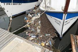 Bachbetten spülen bei Regen Müll und Unrat ins Meer