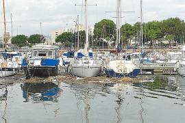 Besonders die Häfen der Inselhauptstadt, Club Náutico und Club de Mar, sind davon stark betroffen.