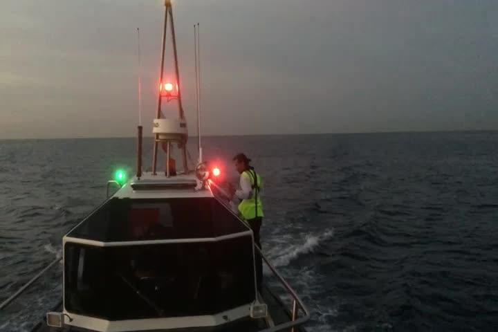 So haben Palmas Hafenlotsen ihren Port im Griff