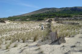 Studie: Klimawandel macht Balearen zur Wüste