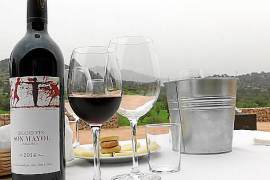 Die Weine haben einen hohen Merlot-Anteil.