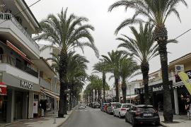 Streit um Palmen in Can Picafort geht in neue Runde
