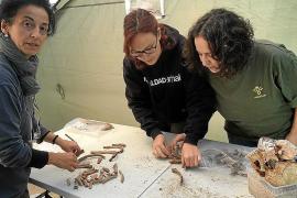 Die Archäologin Lourdes Herrasti (l.), spezialisiert auf Knochenfunde, überwacht die Auswertung. Die sterblichen Überreste geben