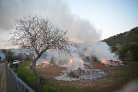 Wann darf wer seine Gartenabfälle verbrennen?