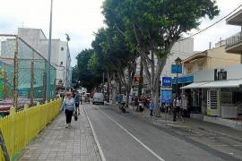 Cala Bona will seine Bäume loswerden