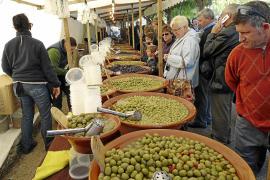Oliven-Fira startet im Bergdorf Caimari