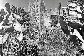 In Schwarz-weiß hielten Tom und Cordelia Weedon vor einem halben Jahrhundert Alltag und Landschaften auf Malorca fest.