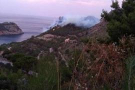 Am Mittwochmorgen sind die Flammen in der Mola de Tuent im Westen von Mallorca noch immer aktiv.