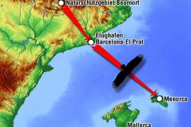 360 Kilometer legte Zarza zurück: Von Lleida über El Prat bis Menorca.