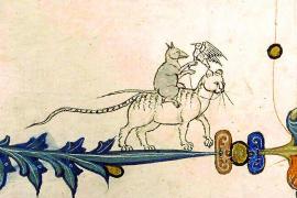 So lebten Mallorcas Katzen im Mittelalter