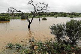Historische Regenmenge auf Mallorca gefallen