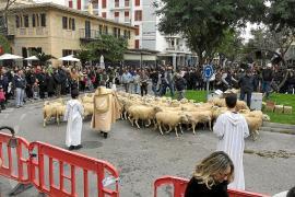 Erste Tiersegnungen auf Mallorca gestartet