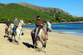 Ärger um Reiterwege an der Küste