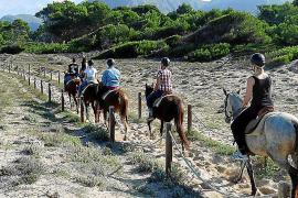 Politiker wollen die Wege durch die Dünen beim Naturstrand Sa Canova auf Mallorca für Reiter sperren.