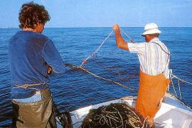 Fischfang auf Balearen um 5,58 Prozent zurückgegangen