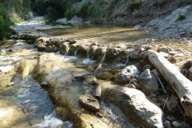 Der Torrent de Coanegra auf Mallorca verwandelt sich nach starken Regenfällen in einen reißenden Wildbach.