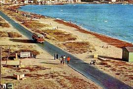 "An der Playa de Palma ""wurde vor allem improvisiert"""