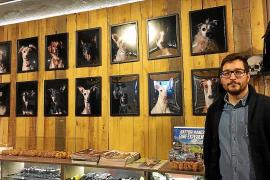 Die Hunde von Son Reus im Porträt
