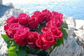 Zum Valentinstag am liebsten Rosen
