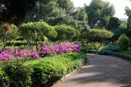 Arbeiten an Marivent-Gärten in vollem Gange