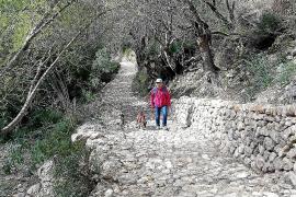 Der alte Weg nach Biniarroi ist wieder begehbar