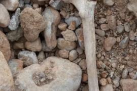 Kinder finden menschliche Knochen