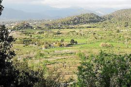 Natur und Weite in Marratxí.