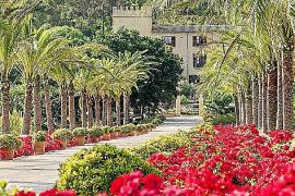 Das Anwesen mit seinen maurischen Gärten ist ein echtes Schmuckstück im Südwesten der Insel.