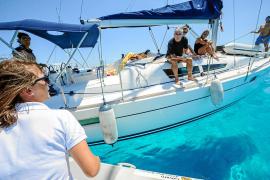 Bodyguards für die Posidonia am Meeresgrund