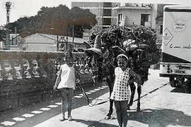 Traditionsplatz in S'Arenal soll schöner werden