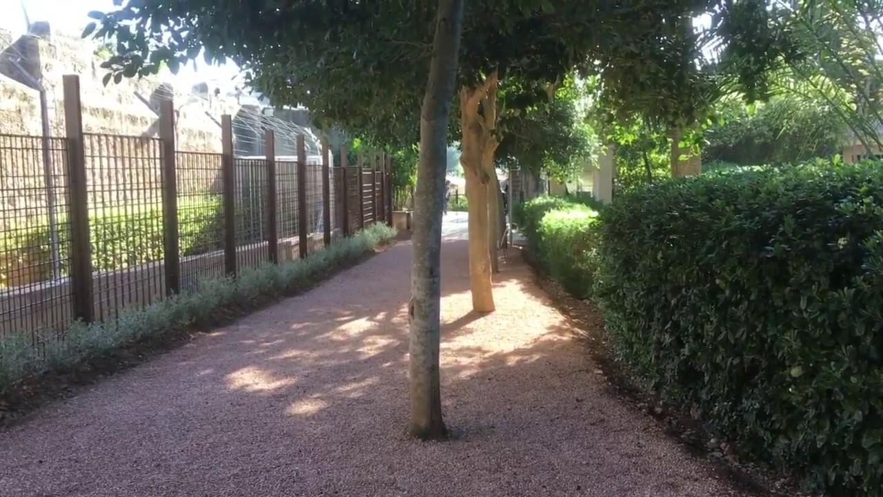 Kaum Besucherandrang bei den Marivent-Gärten