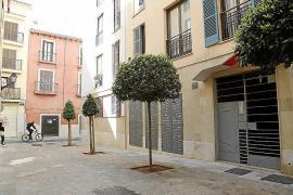 Sozialwohnungen an Mallorca-Urlauber vermietet?