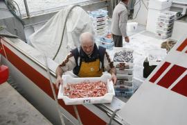 Fischer in Portocolom wollen Fang vor Ort verkaufen