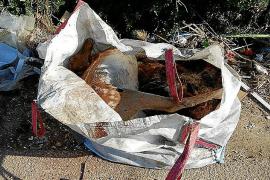 Zwei tote Bambis auf Mallorca gefunden