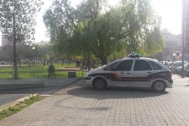 Junge Frau in Palma von Pitbull angegriffen