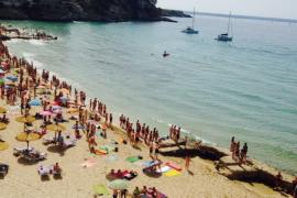 Zweiter Hai vor Mallorca gesichtet