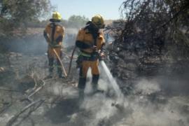 Die Feuerwehrmänner im Einsatz