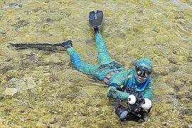 Fotowettbewerb: Apnoe-Taucher knipsten Fische