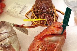 Bunte Etiketten für frischen Mallorca-Fisch