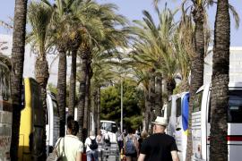 Madrid lässt Gesetz zur Ferienvermietung überprüfen