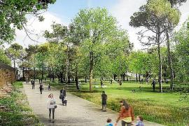 Anfang 2018: Ein neuer Stadtwald entsteht in Palma