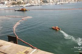 Hafenbehörde widerspricht: Plastikteile nicht von uns