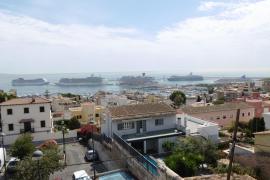 Wieder fünf Ozeanriesen im Hafen von Palma
